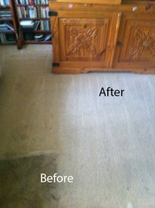 Bedroom-Carpet-Cleaning-cupertino