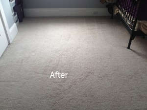 Bedroom-Wall-to-Wall-Carpet-Cleaning-cupertino-B