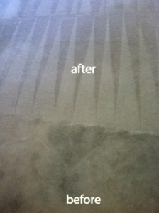 cupertino-Carpet-Cleaning-Carpet-Cleaning