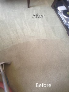 cupertino-Carpet-Cleaning-Company