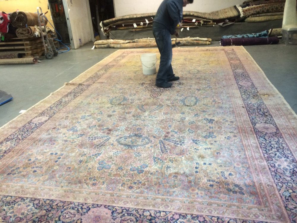 Rug Cleaning Cupertino Ca 408 214 1040