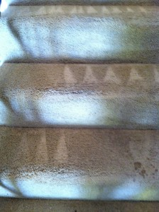 cupertino-Stairs-Carpet-Cleaning
