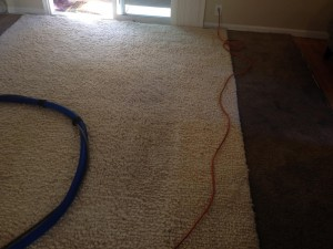cupertino-Traffic-Area-carpet-cleaners