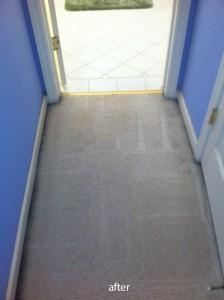 cupertino-Vomit-after-carpet