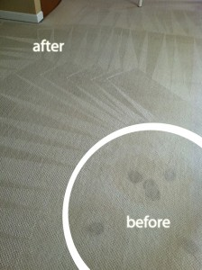 cupertino-Wine-Stain-Carpet-Cleaning