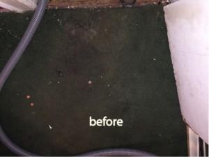 cupertino-before-carpet