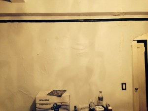 cupertino-mold-damage